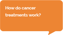 Question: How do cancer immunotherapies work?